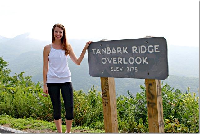 tanbark_brige_overlook_julie