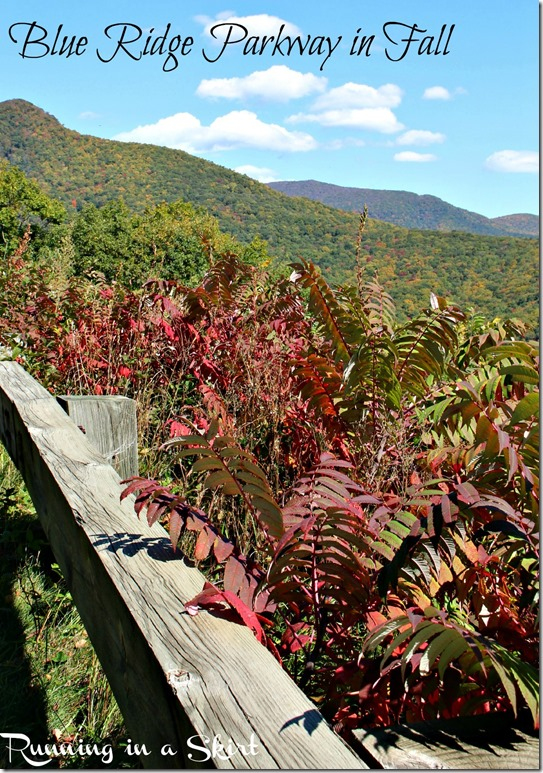 Blue-Ridge-parkway-fall-pin