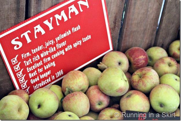 apple-farm-6