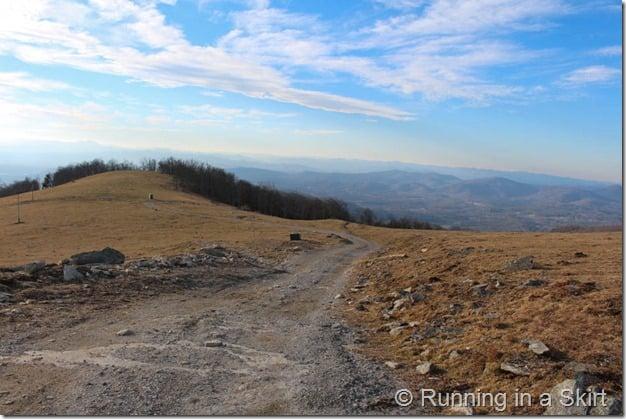 Bearwallow Mountain-181-14