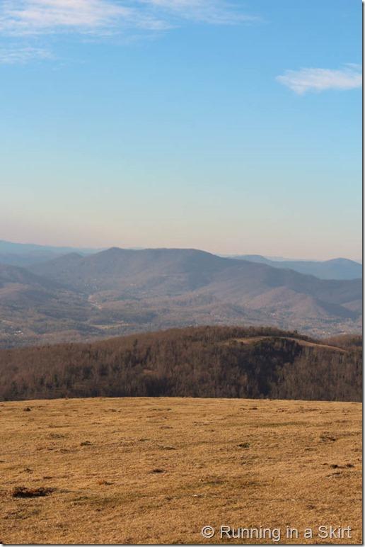 Bearwallow Mountain-184-15