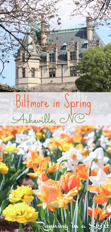 Biltmore Estate Gardens in spring! Stunning daffodils and tulips!/ Running in a Skirt