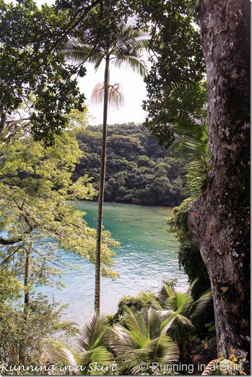 Ilha Grande Blog-33