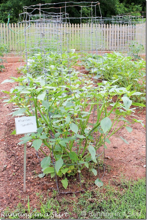 barnsely gardens-9-3