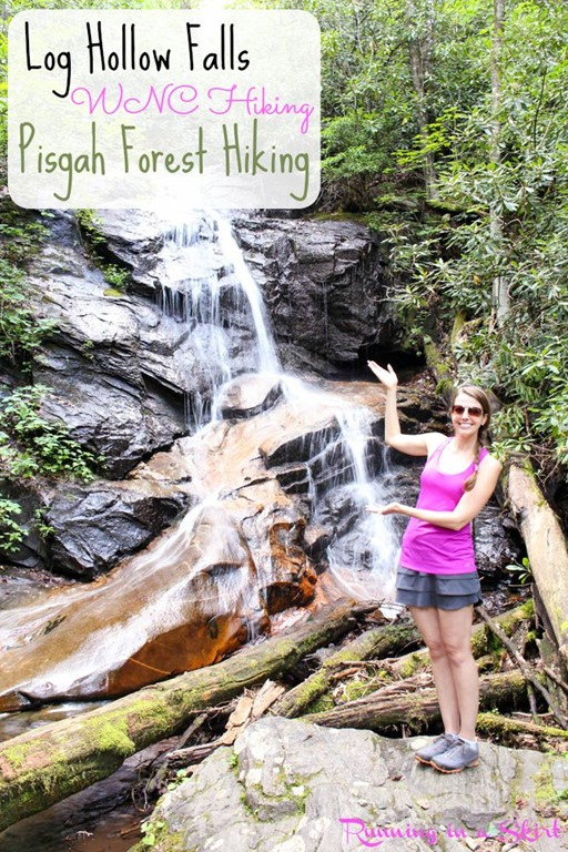 pisgahforestwaterfallsloghollowfalls.jpg
