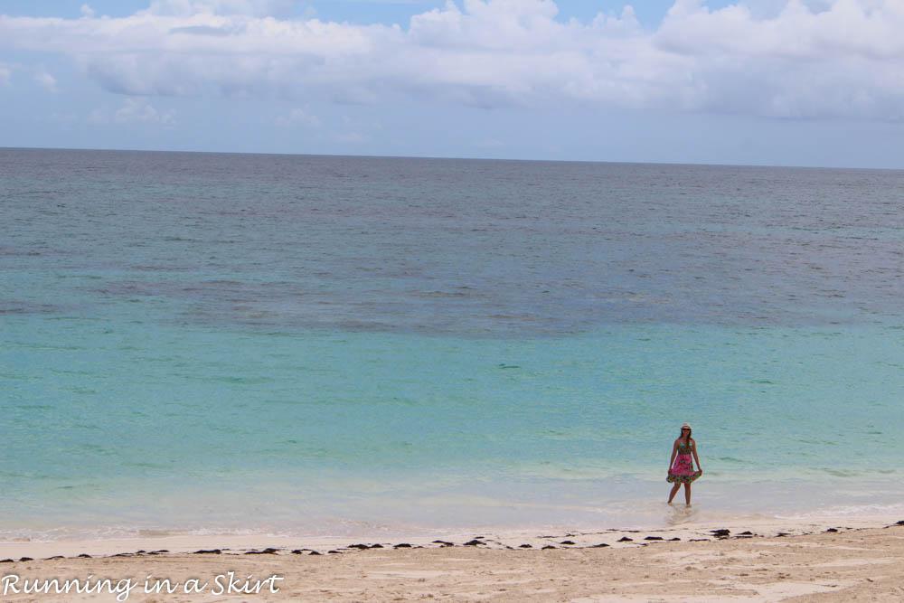 Bahamas, Elbow Cay, August 2015-689-33