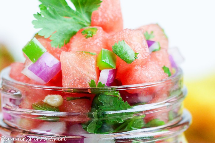 Close up of watermelon, red onion and cilantro.