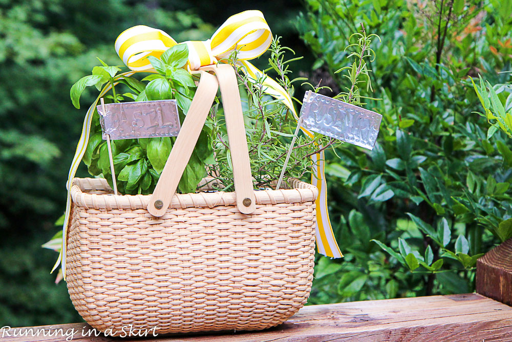 How to Make an Indoor Herb Garden-160-20