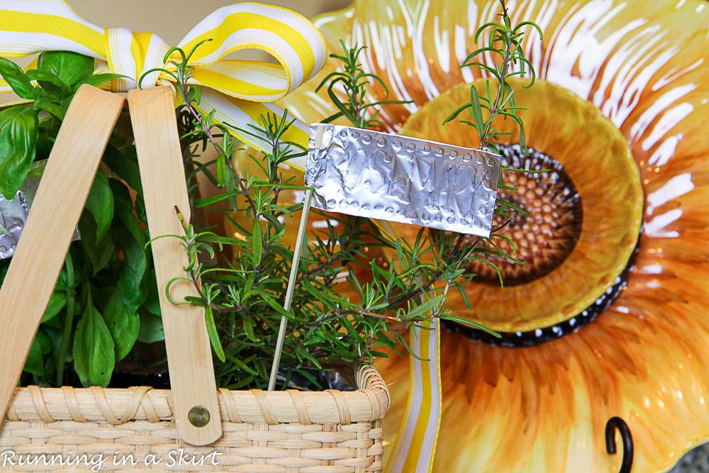 How to Make an Indoor Herb Garden-256-23