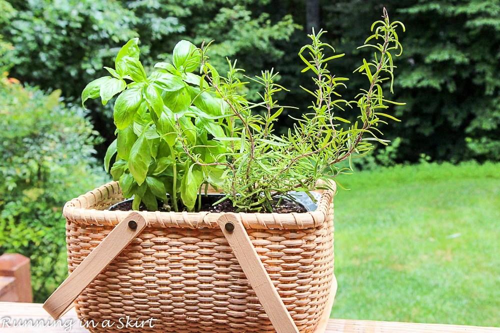 How to Make an Indoor Herb Garden-69-9