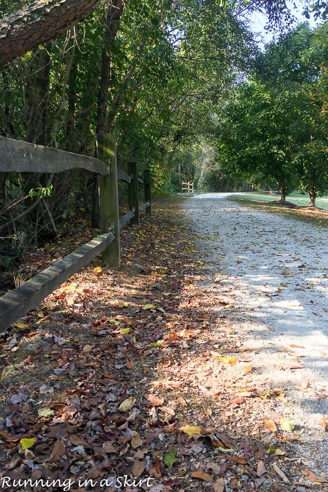 fall-running