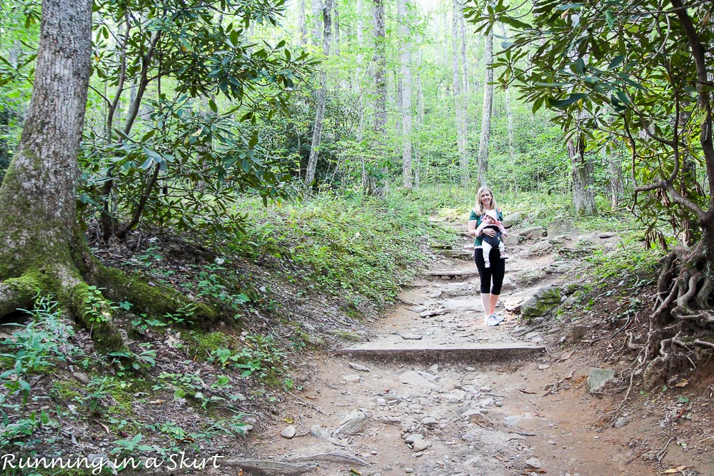 lookout-mountain-montreat-hiking-2