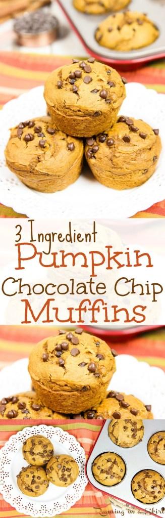 simple-3-ingredient-pumpkin-chocolate-chip-muffins