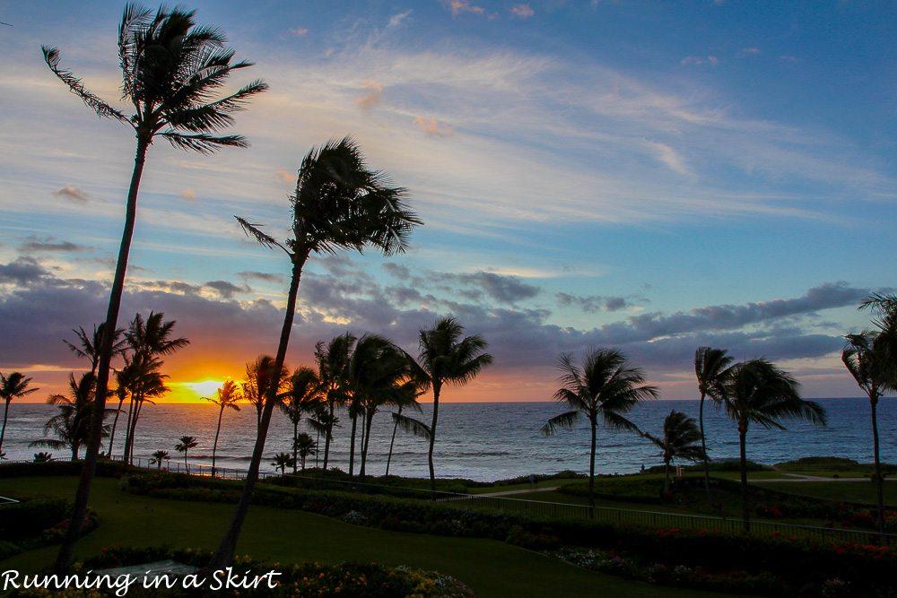 Grand Hyatt Kauai Resort and Spa Experiences