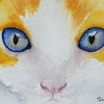 Watercolour painting. Little Blue Eyes (SWA004) Artist: Sharon Whitley
