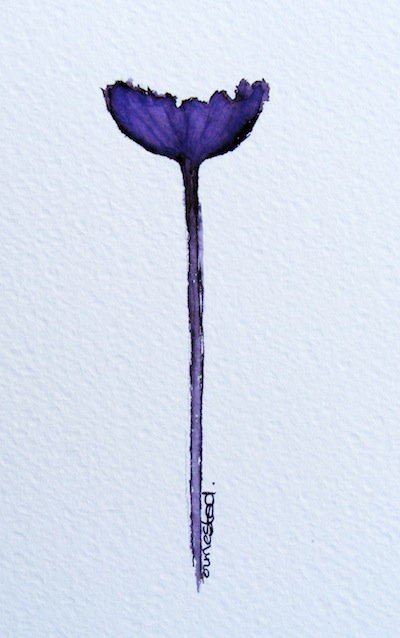 Watercolour painting. Dark Purple Bloom (IOA035). Artist: Ingrid Ormestad