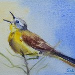 Watercolour Painting. Songbird (SDR013) Artist: Sabine De Rode