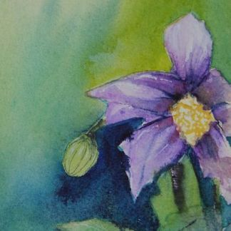 Watercolour painting. Budding (RWB078) Artist: Vandy Massey