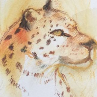 Watercolour painting. RWB035 Well Spotted Artist: Lori Bentley