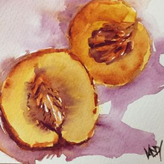 Watercolour painting. RWB0137 Nectarine Juicy. Artist: Vandy Massey