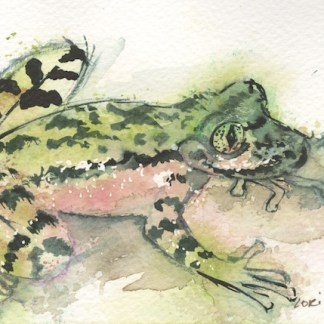 Watercolour painting. LBA041 Ghost Frog. Artist: Lori Bentley