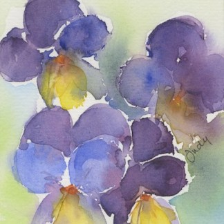 Watercolour painting. JBA015 Pansy Posy. Artist: Judy Barends