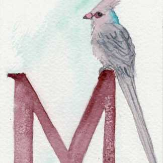 Watercolour painting. LBA070 Blue-napped Mousebird. Artist: Lori Bentley