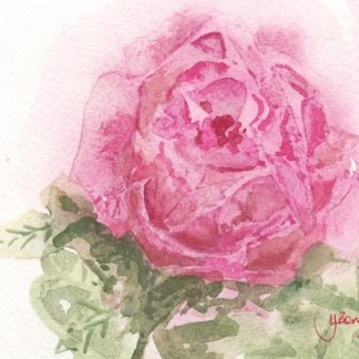 Watercolour painting. LJB001 - Valentine's Rose. Artist: Lindsay Berry