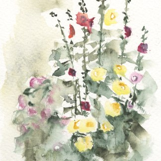 Watercolour painting. RWB0290 Hollyhocks in Henley. Artist: Vandy Massey