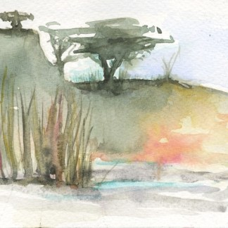 Watercolour painting.LBA092 African River Bank Artist: Lori Bentley