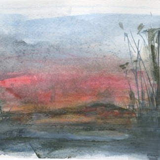 Watercolour painting. RWB0318 Evening Reeds. Artist: Vandy Massey