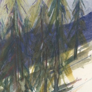 Watercolour painting. RWB0338 Trees in Snow. Artist: Vandy Massey
