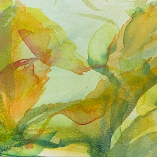 Watercolour painting. RWB0361 Autumnal Turn. Artist: Vandy Massey