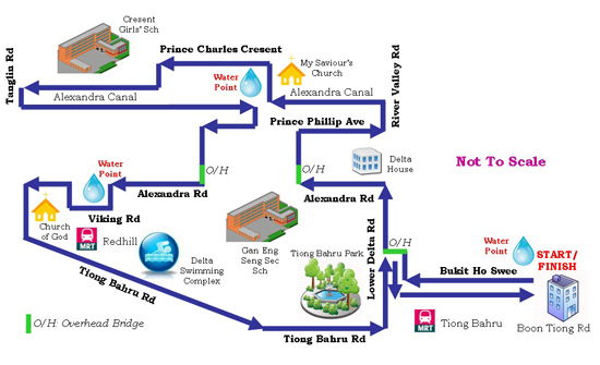 Courtesy of the Organisers, The route