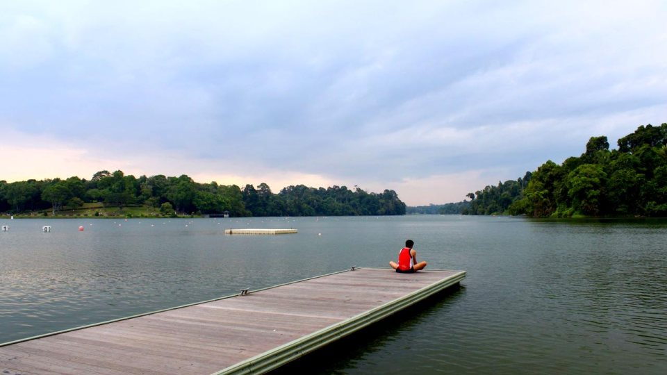Save Our MacRitchie: 4 Reasons Why It's Every Runners' Sweetheart