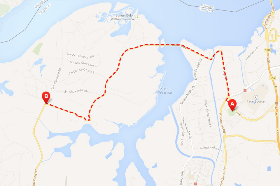 You Are Not a Runner If You Have Not Run in These Singapore Running Trails