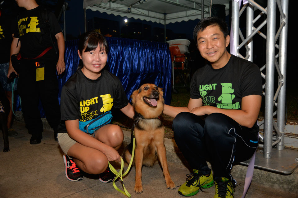 Feet & Paws in the Hundreds at SG's Largest Canine-Human Charity Run