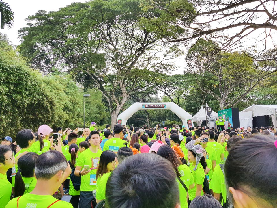 Safari Zoo Run 2018 Race Review: We Had a Memorable Day Running to Support Wildlife
