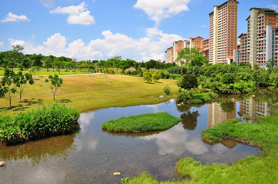 5 Best Singapore's Running Routes in the North