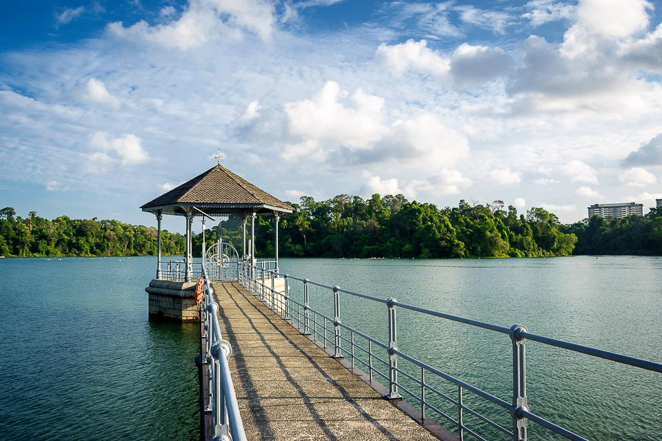 5 Best Singapore's Running Routes in the Central - MacRitchie Reservoir