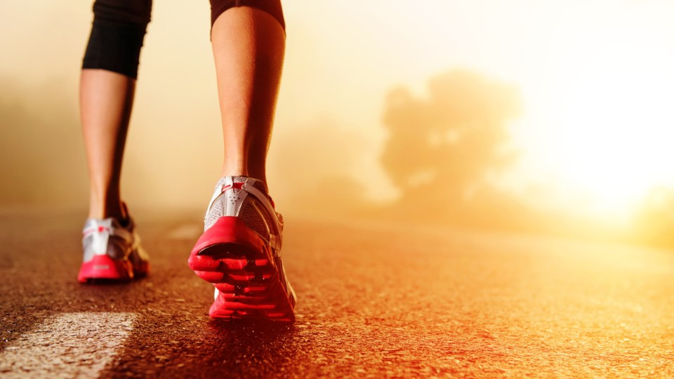 Calories-in, Calories-out: Are You Eating Enough to Run Properly?
