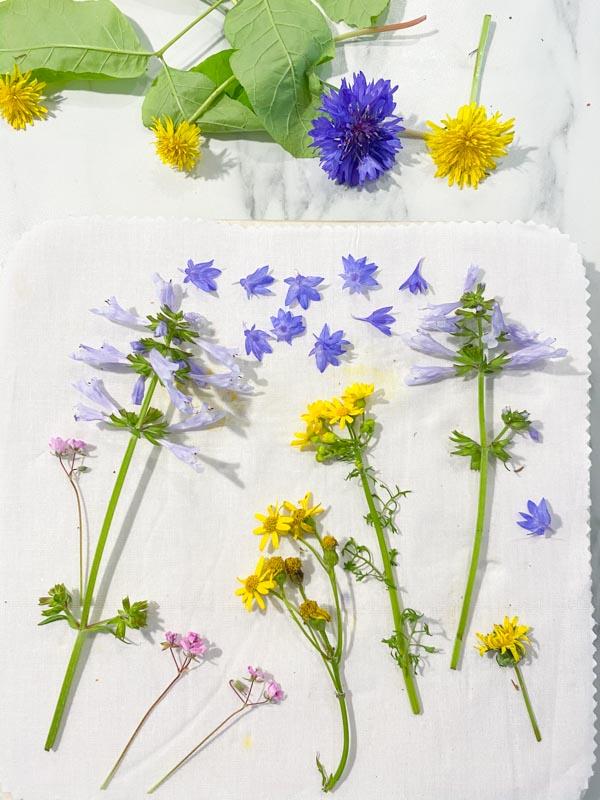 microwave flower press