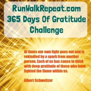 365 Days of Gratitude, You Up for the Challenge?