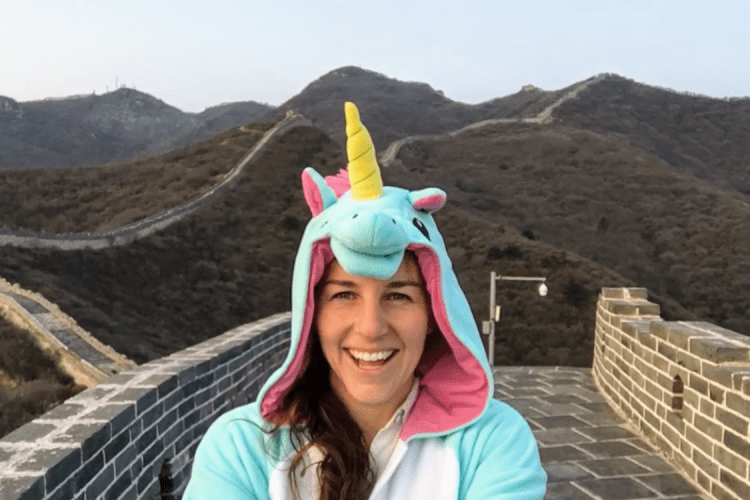 Great Wall Unicorn