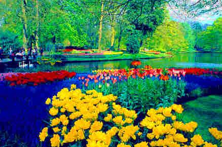 حديقة كيوكينهوف أجمل حديقة في العالم 1