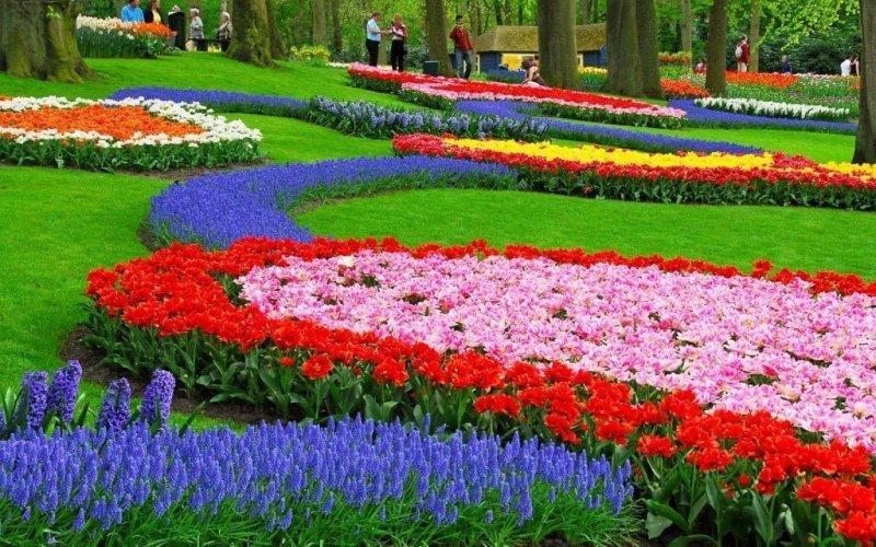 حديقة كيوكينهوف أجمل حديقة في العالم 14