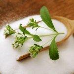 فوائد ومخاطر نبات صبار الألوفيرا ( Aloe Vera ) 3
