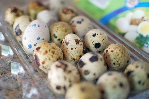فوائد بيض السمان ( الفرّي )
