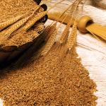 فوائد زيت جنين القمح وكيفية استخدامه 1