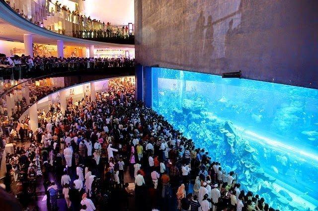 أكبر و أهم 10 أحواض زجاجية للأسماك في العالم ! 4